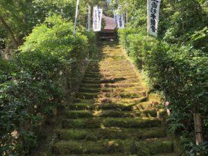 鎌倉にも城があった!源平・南北朝の夢の跡…城ぶら「杉本城」