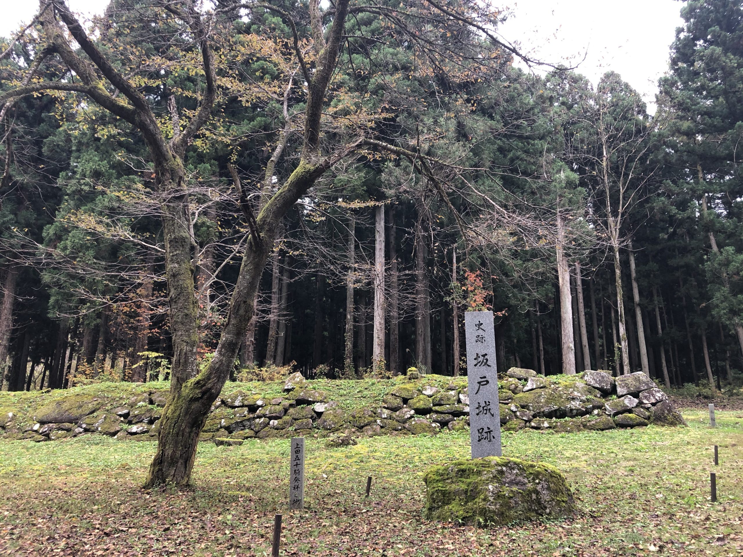 城ぶら「坂戸城」!上杉景勝・直江兼続ゆかり標高634mの山城